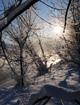 wintersonne_80.jpg